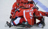 Медальный зачет на Паралимпиаде 2014 и разгромная победа России в следж-хоккее