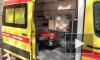 На Торфяной дороге автобус сбил женщину-нарушительницу