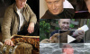 Путин и журавли: к любви электората – через любовь к братьям меньшим