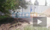 Местных жителей побеспокоила вырубка деревьев во дворе на Олеко Дундича