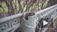 С исторической ограды Александровского парка исчезли ...