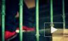 50-летнего петербуржца приговорили к 5 годам за развращение школьницы в интернете