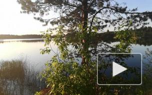 Последствия туристического отдыха на природе: как заповедник превращается в свалку
