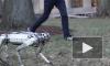 Четвероногий робот-гепард научился делать сальто назад и двигаться в ритме ча-ча-ча