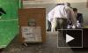 В Египте проходят парламентские выборы