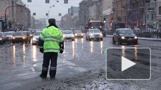 Петербургские чиновники посоветовали гражданам фотографировать снег
