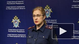 В Нижегородской области задержали подозреваемого в убийстве 12-летней девочки