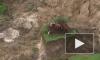 """Видео после страшного землетрясения: коровы выжили, но застряли на """"острове"""""""