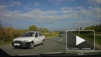 Под Петербургом очевидцы сняли на видео колонну машин с детьми за рулем