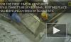 Появилось видео вскрытия Гроба Господнего в Иерусалиме