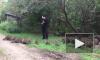 Видео: молодой флейтист из Нью-Йорка устроил концерт для енотов
