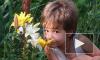 Полиция узнала, кто похитил и убил 5-летнего ребенка под Владимиром