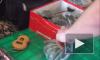 Видео: на Апраксином дворе открыто торгуют запрещенными в РФ веществами