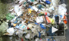 Россияне переплатили за вывоз мусора 700 млн рублей