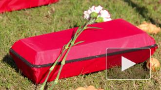 Петербуржцев пугали детскими гробиками