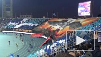 Фанаты Зенита задействуют в перфомансе более 2000 флагов