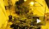 """На Танкиста Хрустицкого мужчина выращивал марихуану и сам регулярно """"дегустировал"""" свою """"продукцию"""""""