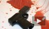 В Ленобласти мужчина расстрелял жену, ребенка и покончил с собой