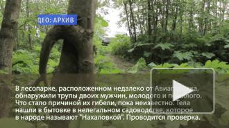 В лесу рядом с Авиагородком нашли трупы двоих мужчин
