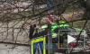 В Петербурге на улице Гастелло легковушка протаранила такси