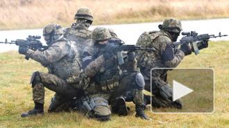Эстония создает войска быстрого реагирования на границе с РФ