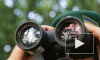 Новости Украины: ЛНР готовится к контрнаступлению, ополченцы ДНР заняли завод со взрывчаткой