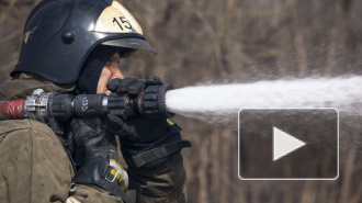 В Петергофе машина врезалась в столб и сгорела дотла