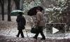 Мокрый снег пришел в Петербург на двое суток