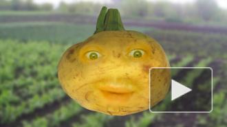 Говорящие овощи: псих, Милонов и мехоборцы