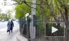 На место смертельной аварии на Суворовском проспекте люди приносят цветы