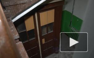 Жители дома на улице Чапыгина восстановят историческую деревянную дверь
