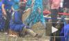 Шаманы на Байкале принесли в жертву барана для прекращения пожаров и наводнений