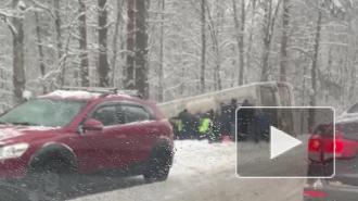 В ДТП с автобусом на Приморском шоссе погиб человек