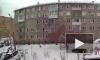 Житель Красноярска выкинул с 5 этажа маленькую собаку