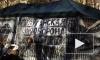 Последние новости Украины 04.06.2014: В Красном Лимане силовики ранили хирурга и убили двоих, атаковав городскую больницу