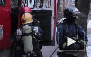 Новости часа: 24 апреля, 13.00 — происшествия
