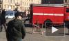 Лаконичный телефонный террорист заминировал дом на Долгоозерной